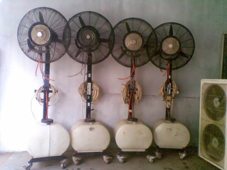 misty fan (4)